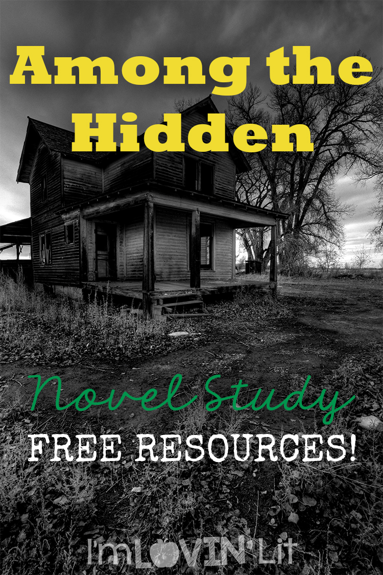 Teaching Among the Hidden: Loving Literacy Stop #20